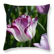 Tulip Splendor Throw Pillow