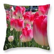Tulip Time 2017 Throw Pillow
