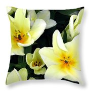 Tulip Town 16 Throw Pillow
