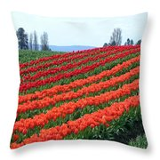 Tulip Town 18 Throw Pillow