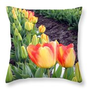 Tulip Town 6 Throw Pillow