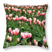 Tulip Town 8 Throw Pillow
