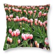 Tulip Town 8 Throw Pillow