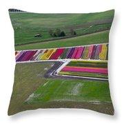 Tulip Town Aerial Throw Pillow