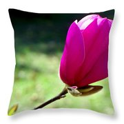 Tulip Tree Blossom Throw Pillow