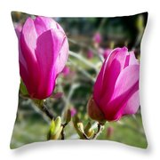 Tulip Tree Blossoms Throw Pillow