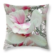 Tulip Tree Blossoms - Magnolia Liliiflora Throw Pillow
