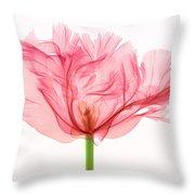Tulip, X-ray Throw Pillow