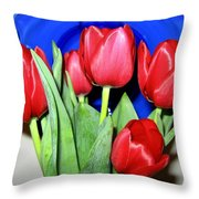 Tulipfest 1 Throw Pillow