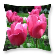 Tulipfest 3 Throw Pillow