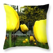 Tulipfest 8 Throw Pillow