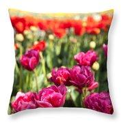 Tulips 2 Throw Pillow