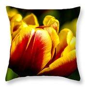 Tulips 7 Throw Pillow