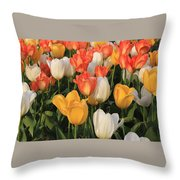 Tulips Ablaze With Color Throw Pillow