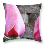 Tulips Artwork Flowers 26 Pink Tulip Flowers Art Prints Nature Floral Art Throw Pillow