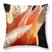 Tulips Artwork Flowers Floral Art Prints Spring Peach Tulip Flower Macro Throw Pillow