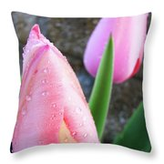 Tulips Artwork Pink Tulip Flowers Srping Florals Art Prints Baslee Troutman Throw Pillow