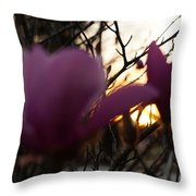 Tulips At Sunset I Throw Pillow