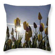 Tulips Blooming With Sun Star Burst Throw Pillow