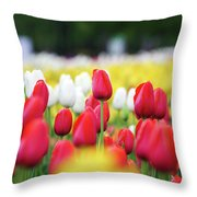 Tulips By Jared Windmuller - Tulip - Red -  Throw Pillow