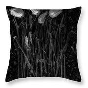 Tulips Decaying At Sunset Throw Pillow