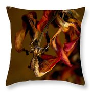 Tulip's Demise - A Natural Abstract Throw Pillow