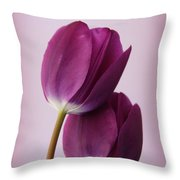 Tulips Throw Pillow by Diane Reed