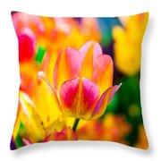 Tulips Enchanting 16 Throw Pillow