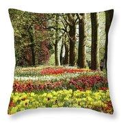 Tulips Everywhere 1 Throw Pillow