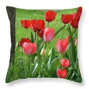 Tulips Flowers Art Prints Spring Tulip Flower Artwork Nature Art Throw Pillow