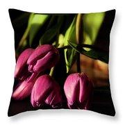 Tulips In Evening Sunlight Throw Pillow