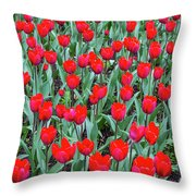 Tulips In Kristiansund, Norway Throw Pillow
