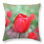 Tulips In Spring 4 Throw Pillow
