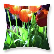Tulips In The Light Throw Pillow