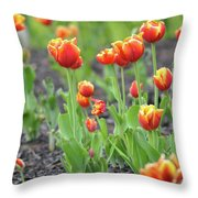 Tulips In The Springtime Throw Pillow