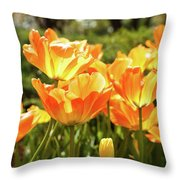 Tulips In The Sunlight Throw Pillow