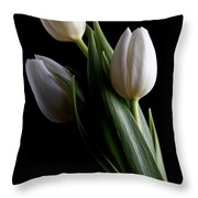 Tulips Iv Throw Pillow