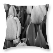 Tulips 4 Throw Pillow