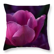 Tulips Purple Layers Throw Pillow