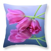 Tulips .tulipa. Throw Pillow