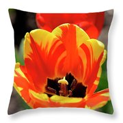 Tulips Yellow Red Throw Pillow