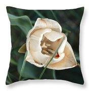 Tulipsandbluebells Throw Pillow