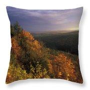 Tully River Valley Autumn Throw Pillow