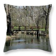 Tulpehocken Creek Throw Pillow