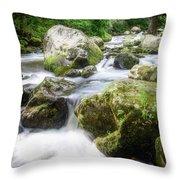 Tumbling Creek Throw Pillow