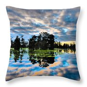 Tumultuous Swamp Throw Pillow