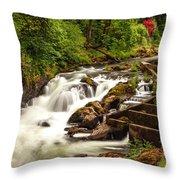 Tumwater Throw Pillow