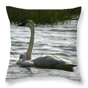 Tundra Swan And Signets Throw Pillow