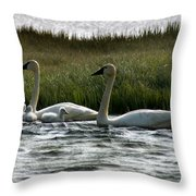 Tundra Swans And Cygents Throw Pillow