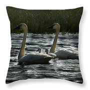 Tundra Swans Throw Pillow